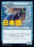 《トリトンの波渡り/Triton Waverider【JPN】[THB青C]