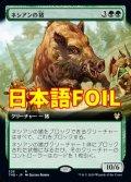 《ネシアンの猪/Nessian Boar》FOIL【JPN】[S--緑R]