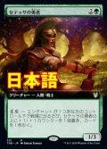 《セテッサの勇者/Setessan Champion》【JPN】[S--緑R]