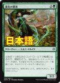 《進化の賢者/Evolution Sage》【JPN】[WAR緑U]