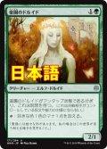 《楽園のドルイド/Paradise Druid》【JPN】[WAR緑U]