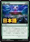 《城塞への猛攻/Storm the Citadel》【JPN】[WAR緑U]