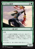《アゾカンの射手/Atzocan Archer》【JPN】[XLN緑U]