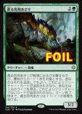 《貪る死肉あさり/Deathgorge Scavenger》FOIL【JPN】[XLN緑R]