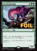 《切り裂き顎の猛竜/Ripjaw Raptor》FOIL【JPN】[XLN緑R]