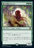 《夢の円環のドルイド/Circle of Dreams Druid(176)》【JPN】[AFR緑R]