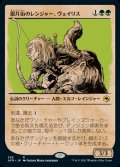 《銀月街のレンジャー、ヴェイリス/Varis, Silverymoon Ranger(209)》【JPN】[AFR緑R]