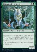 《尊狼の使い魔、アナーラ/Anara, Wolvid Familiar(214)》【JPN】[CMR緑U]