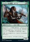 《ジョラーガの酋長、ヌーマ/Numa, Joraga Chieftain(246)》【JPN】[CMR緑U]