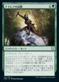 《ナイレアの試練/Ordeal of Nylea(247)》【JPN】[CMR緑U]