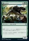 《鱗ビヒモス/Scaled Behemoth(251)》【JPN】[CMR緑U]