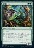 《選別ワーム/Sifter Wurm(254)》【JPN】[CMR緑U]