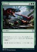 《群れの力/Strength of the Pack(259)》【JPN】[CMR緑U]