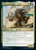 《アラシンの守護者、ハムザ/Hamza, Guardian of Arashin(278)》【JPN】[CMR金U]