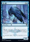 《占い鴉/Augury Raven(044)》【JPN】[KHM青C]