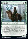 《北方の先導/Boreal Outrider(163)》【JPN】[KHM緑U]