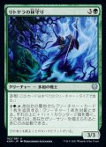 《リトヤラの林守り/Littjara Glade-Warden(182)》【JPN】[KHM緑U]