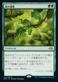 《森の頌歌/Sylvan Anthem(176)》【JPN】[MH2緑R]