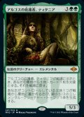 《アルゴスの庇護者、ティタニア/Titania, Protector of Argoth(287)》【JPN】[MH2緑M]