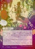 《耕作/Cultivate(114)》FOIL【JPN】[STA緑U]