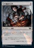 《殲滅学入門/Introduction to Annihilation(003)》【JPN】[STX無C]