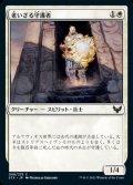 《老いざる守護者/Ageless Guardian(008)》【JPN】[STX白C]