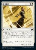 《輝く抵抗/Beaming Defiance(009)》【JPN】[STX白C]