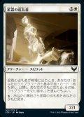 《星霜の巡礼者/Pilgrim of the Ages(022)》【JPN】[STX白C]