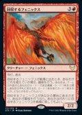《回収するフェニックス/Retriever Phoenix(113)》【JPN】[STX赤R]