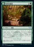 《封印突破法/Containment Breach(125)》【JPN】[STX緑U]