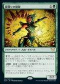 《龍護りの精鋭/Dragonsguard Elite(127)》【JPN】[STX緑R]