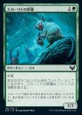 《スカーリドの群棲/Scurrid Colony(142)》【JPN】[STX緑C]