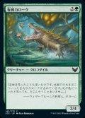 《有刺カローク/Spined Karok(143)》【JPN】[STX緑C]