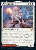 《狡猾な相棒、ミラ/Mila, Crafty Companion(153)》【JPN】[STX白M]