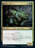 《腐りゆくカローク/Moldering Karok(206)》【JPN】[STX金C]