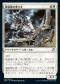 《嵐前線の乗り手/Stormfront Riders(046)》【JPN】[TSR白U]