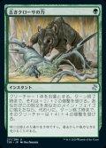 《古きクローサの力/Might of Old Krosa(217)》【JPN】[TSR緑U]
