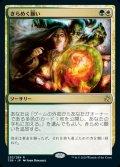 《きらめく願い/Glittering Wish(253)》【JPN】[TSR金R]