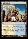 《天界の列柱/Celestial Colonnade》【JPN】[WWK土地R]
